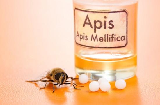 Гомеопатия пчелами при тонзиллите