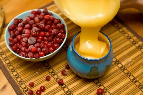 Мед и клюква в лечении хронического бронхита