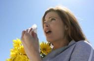 Как лечить аллергический бронхит