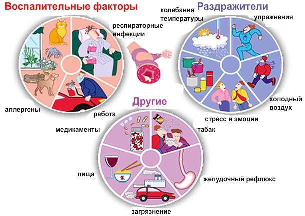Причины возникновения бронхиальной астмы